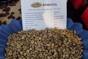 Bước đi chiến lược để xuất khẩu cà phê tìm vị thế 'ngôi vương'