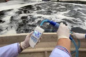 Công nghệ Bio-Nano Nhật Bản đã xử lý thành công gần 100% mùi bãi rác Nam Sơn