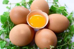 Bạn đang hiểu sai về trứng gà mà không biết?