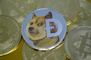 Lý do nhiều người mua đồng tiền chó Shiba