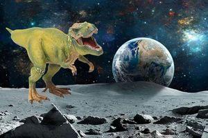 Hé lộ bí mật kinh hoàng nếu phát hiện xương khủng long trên Sao Hỏa