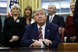 Cựu Tổng thống Trump tìm được 2 luật sư mới đại diện cho phiên tòa luận tội