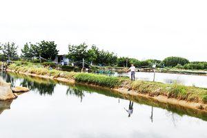 Cam Lâm: Thu hồi hơn 11ha đất thực hiện dự án kè và đường quanh đầm Thủy Triều