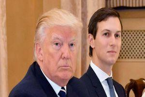 Ông Trump cùng con rể được đề cử giải Nobel Hòa bình 2021