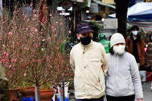 Hà Nội: Ghé thăm chợ hoa cổ nhất Hà Nội trong những ngày cuối năm