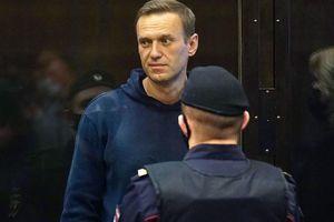 Mặc biểu tình và phản đối từ phương Tây, Nga bắt đầu xét xử ông Navalny