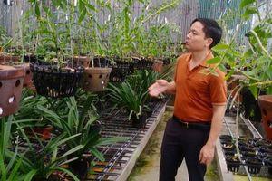 Ông chủ 7X Mạnh Hùng và bí quyết thành công khi trồng lan
