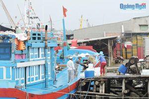 Ngư dân Lý Sơn kỳ vọng phiên biển mới