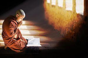 Vô ý giẫm lên nhãn hiệu có hình Phật tôi phải làm sao?
