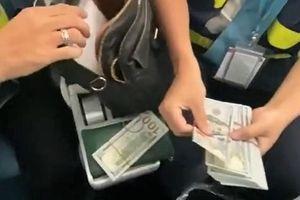 Một hành khách để quên hơn 10.000 USD trên máy bay