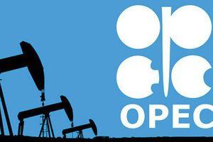 OPEC+ dự báo diễn biến cung dầu và triển vọng kinh tế thế giới