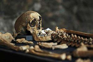 25 bộ xương chứa bí mật về Cái chết đen