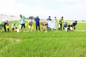 Đóng góp sức trẻ bảo vệ môi trường