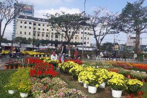 Chợ hoa Tết Đà Nẵng vắng bóng người mua