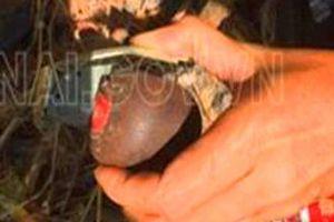 Dùng súng, lựu đạn bắt giữ người vay tiền