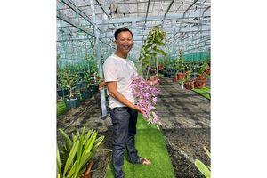 Ông chủ vườn lan Long Bảo và niềm đam mê bất tận với hoa lan