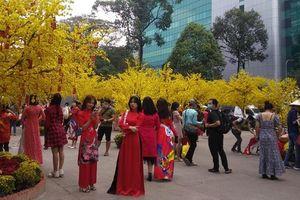 Người dân TP Hồ Chí Minh thờ ơ phòng dịch tại 'đường mai vàng'