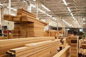 Chiến lược gia tăng xuất khẩu gỗ sang thị trường Hoa Kỳ