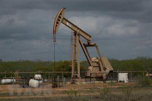 Giá dầu thế giới tiếp tục tăng cao trong phiên ngày 4/2