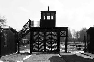 Đưa ra xét xử một nữ thư ký trong trại tập trung của Đức quốc xã