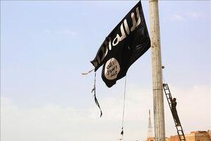 Liên hợp quốc xác nhận thủ lĩnh Al Qaeda ở Yemen bị bắt giữ