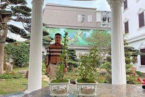 Nghệ nhân Bùi Hữu Giang chia sẻ bí quyết chăm sóc hoa lan