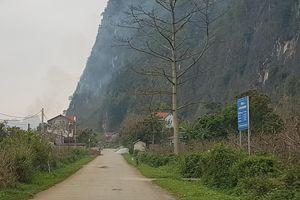 Lục tìm trong Minh Thực Lục - Kỳ III: Thời khắc bi thương của Đại Việt