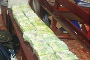Đồng Nai: Triệt phá đường dây, thu giữ 20 kg ma túy đá