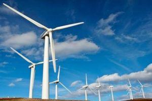 Quảng Trị: 3 dự án điện gió trị giá 5.800 tỷ đồng được chấp thuận đầu tư