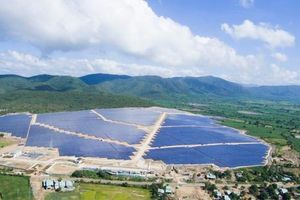 Điện Gia Lai (GEG) thành lập công ty con vốn 200 tỷ đồng
