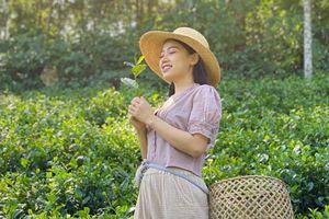 Khám phá đặc sản, văn hóa đa vùng miền trên kênh Sunny Vietnam