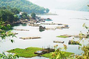 Phấn đấu đưa huyện Đà Bắc phát triển bền vững theo hướng nông nghiệp, dịch vụ