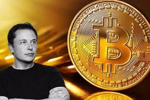 'Sau động thái của Elon Musk, giá Bitcoin sẽ tăng lên 50.000 USD/đồng'
