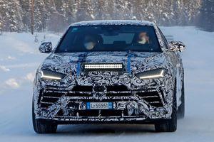 Lamborghini Urus đời mới có thể được thêm tùy chọn động cơ hybrid