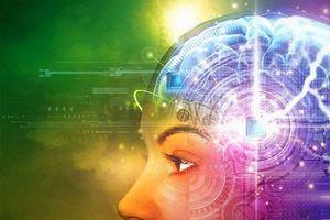 10 bí ẩn nhân loại thách thức khoa học giải mã