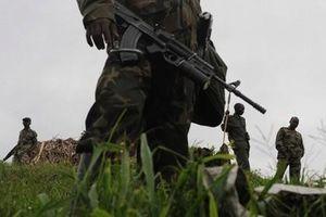 Ít nhất 15 người bị sát hại trong các vụ tấn công nghi do phiến quân thực hiện tại CHDC Congo