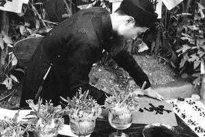 Tết Giải phóng 1955
