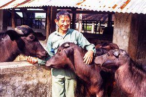 Nhà văn Văn Biển kể chuyện Hồ Giáo nuôi trâu
