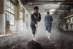 Đột nhập 'pháo đài' đệ nhất mỹ tửu Mao Đài đắt đỏ nhất thế giới