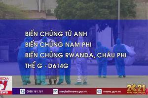 Bốn biến chủng nCoV đã xuất hiện ở Việt Nam