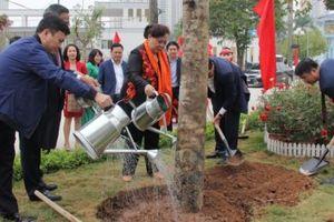 Hà Nội phấn đấu trồng mới hơn 400.000 cây dịp Tết trồng cây