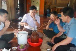 Tục uống rượu cần ngày tết của đồng bào Thái xứ Thanh