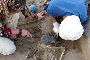 Sự thật về chiếc 'iPhone' trong hầm mộ 2.100 năm tuổi