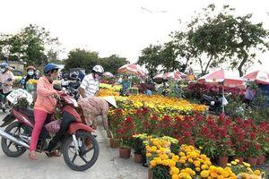 Mùa hoa Tết ở TP HCM không còn hét giá, bán đổ bán tháo