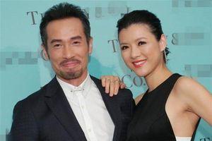 Hoa hậu Trần Nhân Mỹ trở lại TVB sau 8 năm vắng bóng