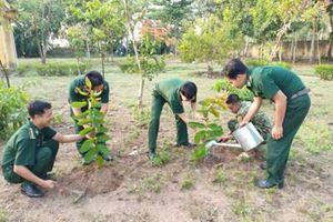 An Giang phát động Tết trồng cây 'Đời đời nhớ ơn Bác Hồ'