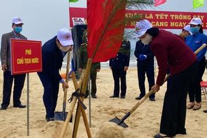 Phó Chủ tịch nước phát động Tết trồng cây Xuân Tân Sửu
