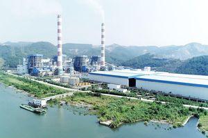 Nhiệt điện Quảng Ninh (QTP): Cơ Điện Lạnh tiếp tục bán thành công 5 triệu cổ phiếu