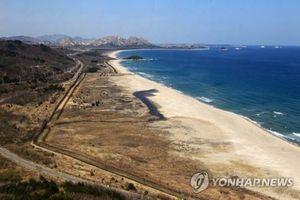 Li kì vụ vượt biên Triều Tiên: Bơi 10km suốt 6 tiếng trong nước lạnh