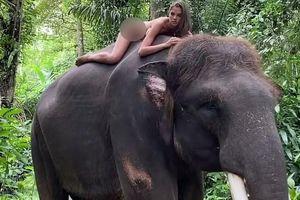 Nữ người mẫu bị chỉ trích vì khỏa thân trên lưng voi